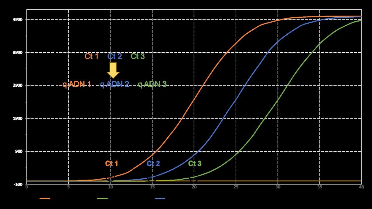 qPCR - Biomnigene