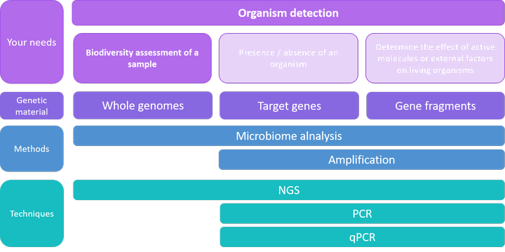 Organism detections - Biodiversity assessment of a sample