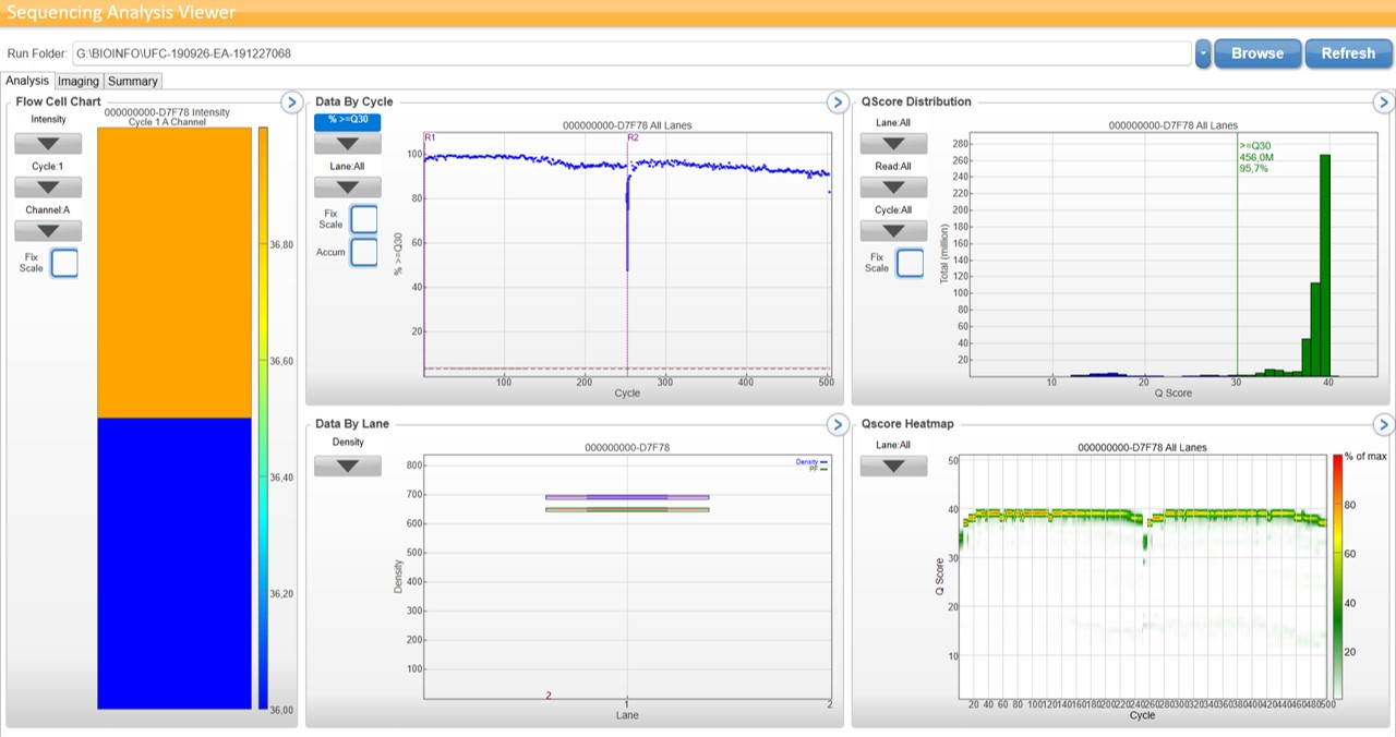 Screenshot during a sequencing on Illumina MiSeQ
